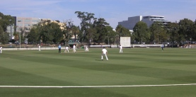 Cricket at Junction Oval