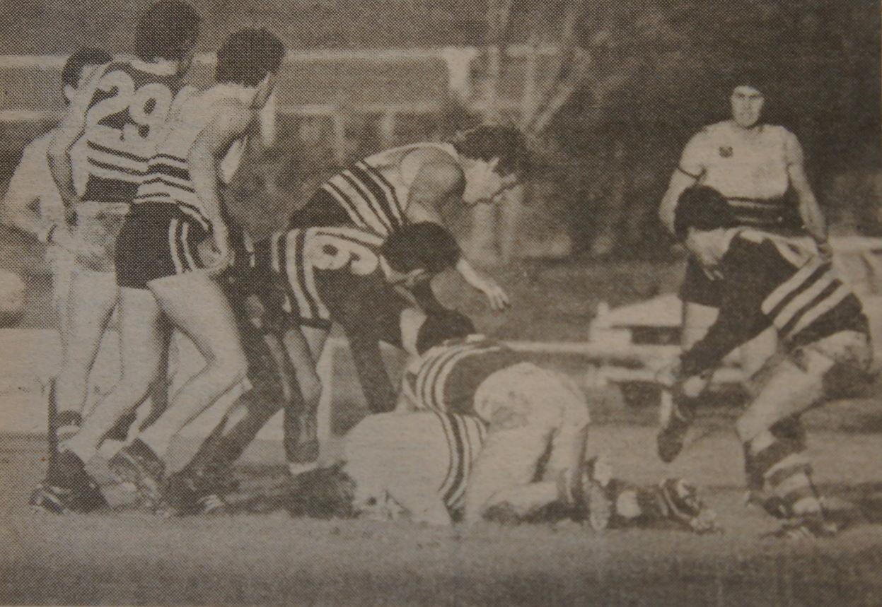 1980 VFA season