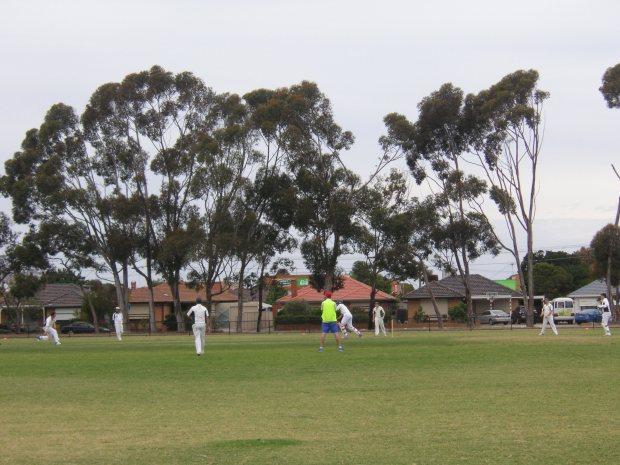 Non-reflective cricket