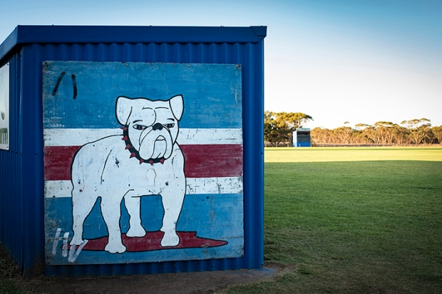 A proud looking Bulldog at Murrayville, just inside the Victorian border.
