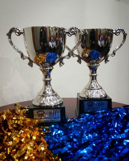 Willi trophies