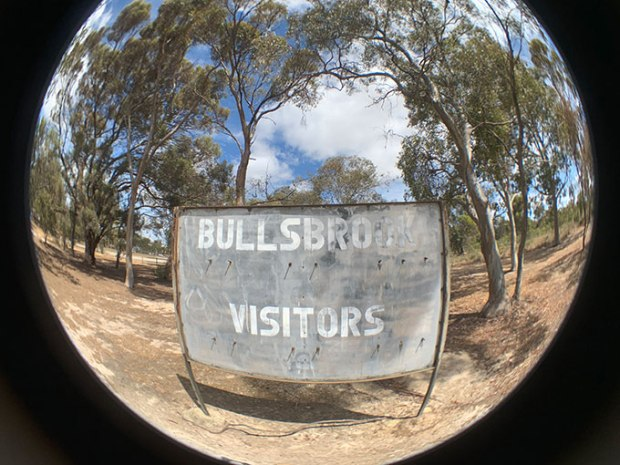 BullsbrookSmallFish
